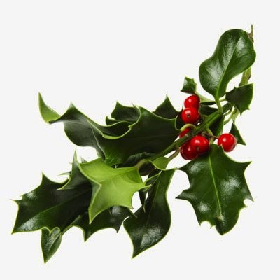 christmas-mistletoe